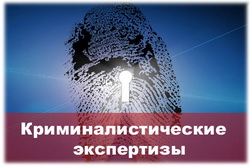 технико криминалистическая экспертиза
